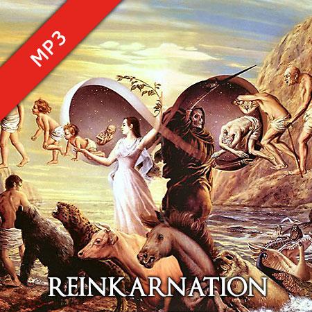 Reinkarnation – Der Mensch Im Wandel Von Tod Und Wiedergeburt